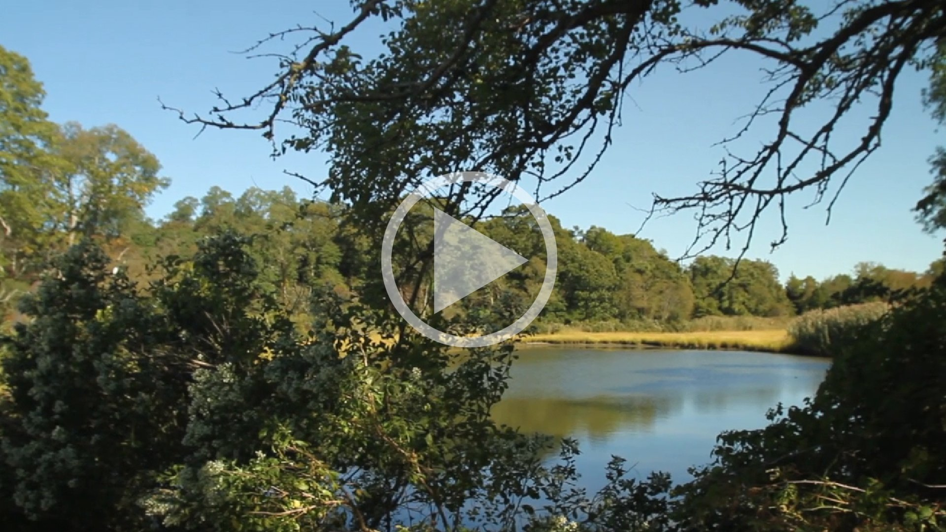 EXPLORE SHELTER ISLAND HEIGHTS